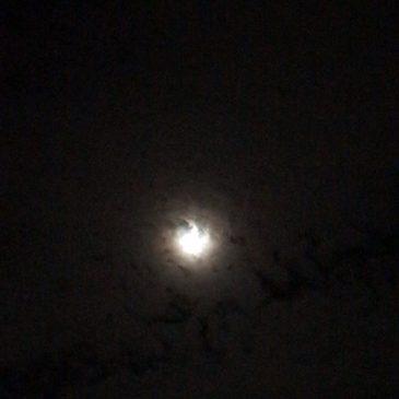 #中秋の名月